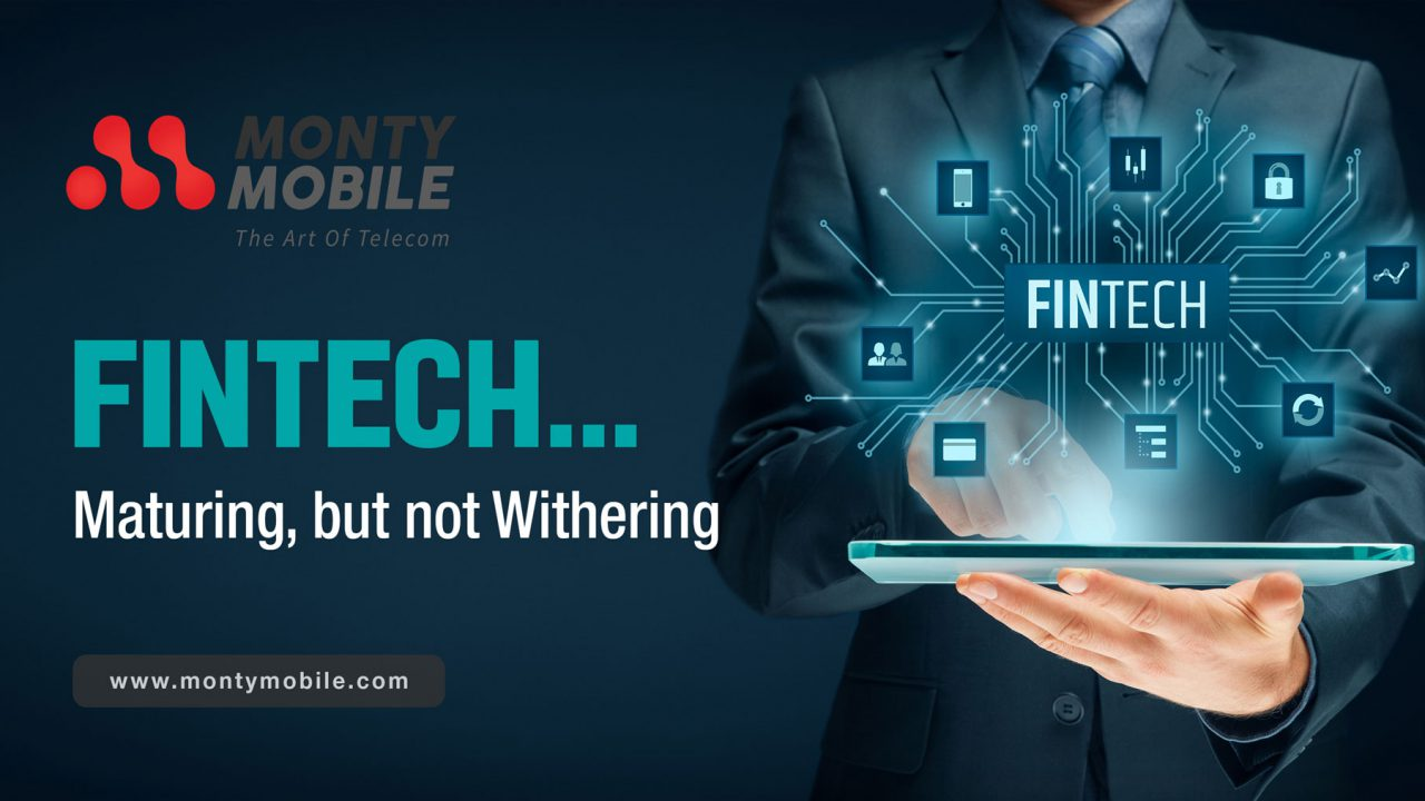 FinTech maturing but not withering